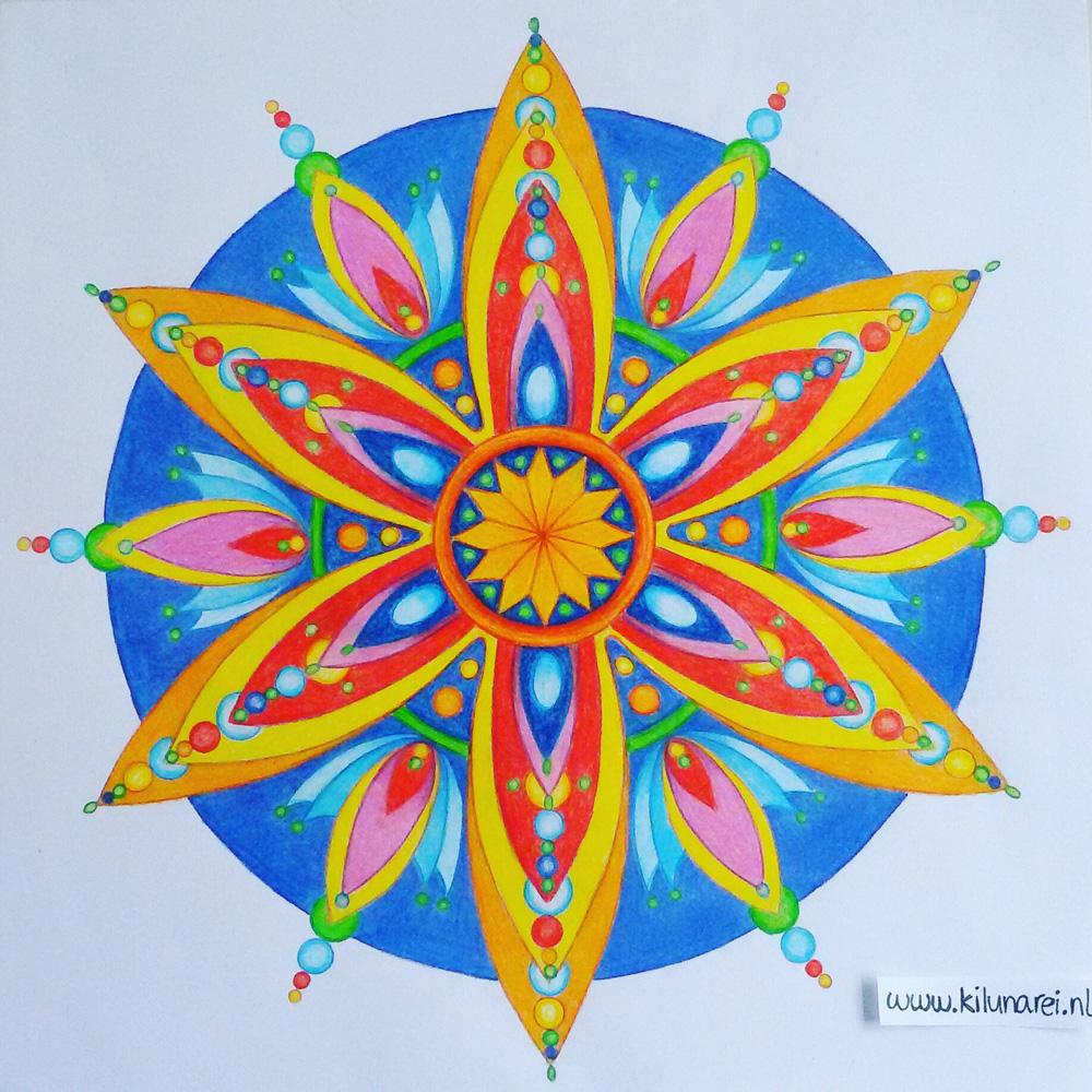 Kosmische bloem, les 4 kosmische vormen I